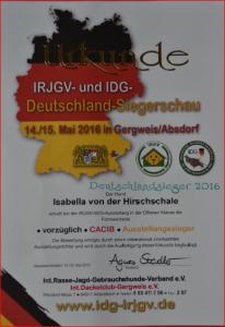 Urkunde Deutschland Sieger 2016