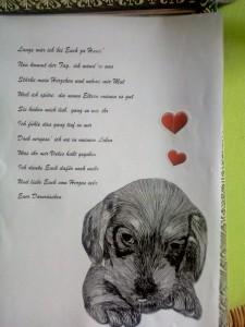 Gedicht Dornröschen