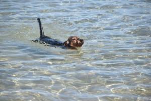 Wilma im griechischen Meer